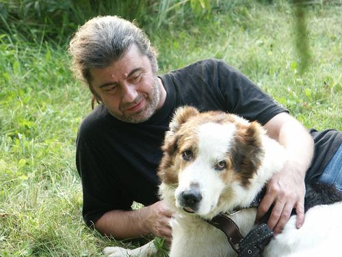 Капли от блох Барс для собак - зачем нужны и как применять